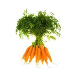 dutch carrots