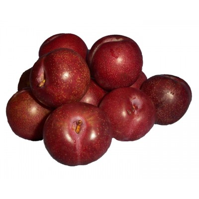 Blood Plums