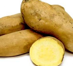 yellow sweet potato